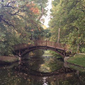 Herbst im Park Leipzig