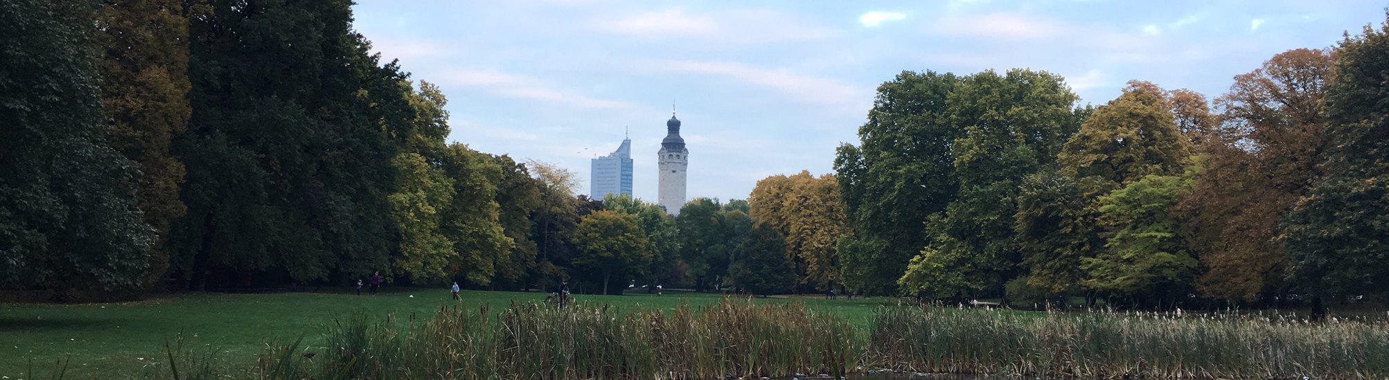 Yoga im Park oder Privat in Leipzig